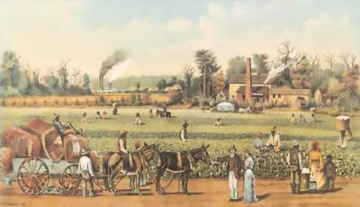 Cotton Plantation Currier and Ives